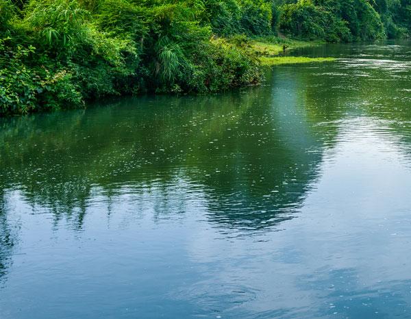 China wetlands